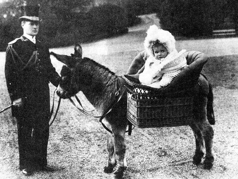 Цесаревич Алексей на прогулке, Санкт-Петербург, 1906 год.