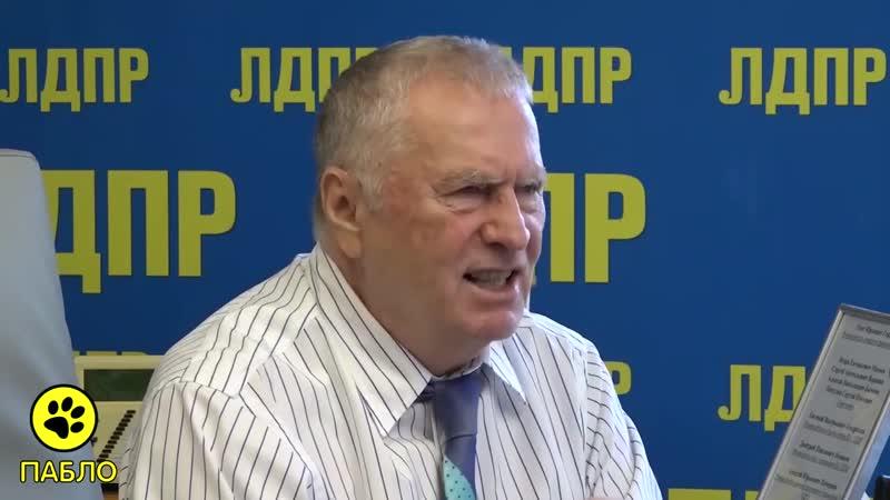 Жириновский Они ввели Навального в кому искусственно он бомж дармоед бездельник