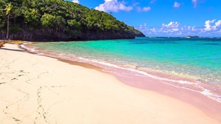 Softest Beach Sounds from the Tropics - Ocean Wave Sounds for Sleeping, Yoga, Meditation, Study