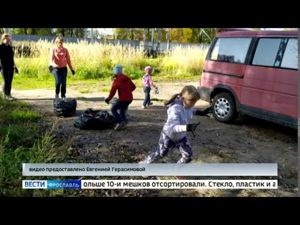 В Ярославле на Липовой горе прошел эко субботник