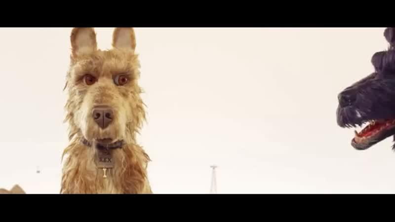 Но никто здесь не падает духом И не забывай об этом Никогда Мультипликационный Фильм Остров Собак