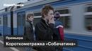 Короткометражка «Собачатина» по рассказу Захара Прилепина