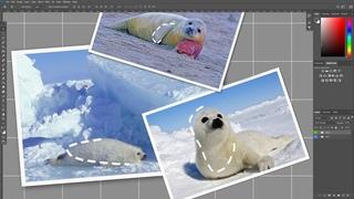 Процесс создания обложки сингла «Молнии» / The Making of «MOLNII» Cover Art