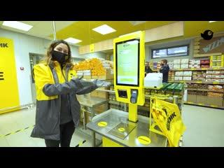 Новая сеть дискаунтеров «Чижик» открыла первые магазины