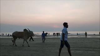 Shashi в Мандреме. Закат солнца, сансет. GOA 2020. Индия.