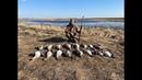 Охота на гуся 2021. Охота на гуся в Беларуси 5.04.21. Гусь 2021