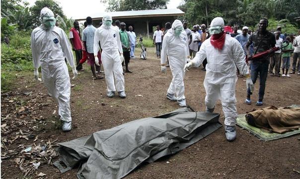Что опаснее эбола или коронавирус Сложно поддающаяся контролю пандемия COVID-19, вызванная недавно обнаруженным новым типом коронавируса SARS-CoV-2, повергает в панику население всего мира.