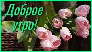 Доброе утро! Наконец-то , Весна! Очень нежная музыкальная открытка с добрым утром!