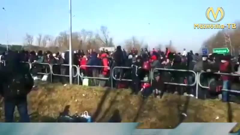 Гигантские очереди укропов заробитчан которые идут из Польши на Украину