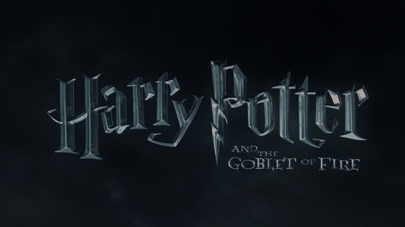 Гарри Поттер и Кубок огня 2005