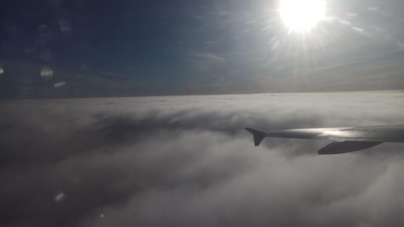 Ural Airlines Airbus A320 VQ BDM Архангельск Жуковский взлёт 2 22 октября 2020