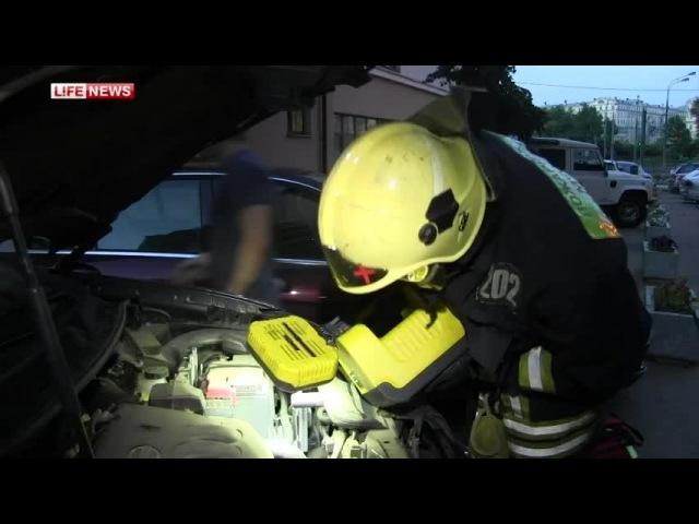 Спасатели вытащили змею из авто москвича