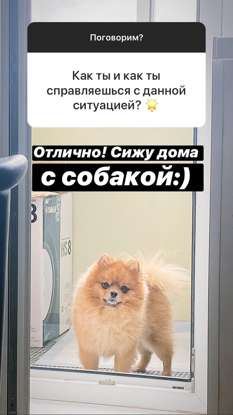 https://sun9-12.userapi.com/c206520/v206520783/cd64c/G0EGGQjkP8w.jpg