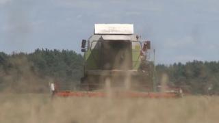 Спасатели в помощь аграриям. На уборке урожая трудятся сотрудники Пинского ГРОЧС