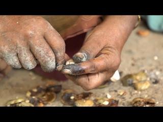 Noix de cajou: la cadence infernale des ouvrières indiennes