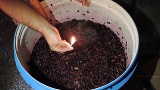 Процесс приготовления Грузинского вина.один момент.Мачари и маленкий тост)))
