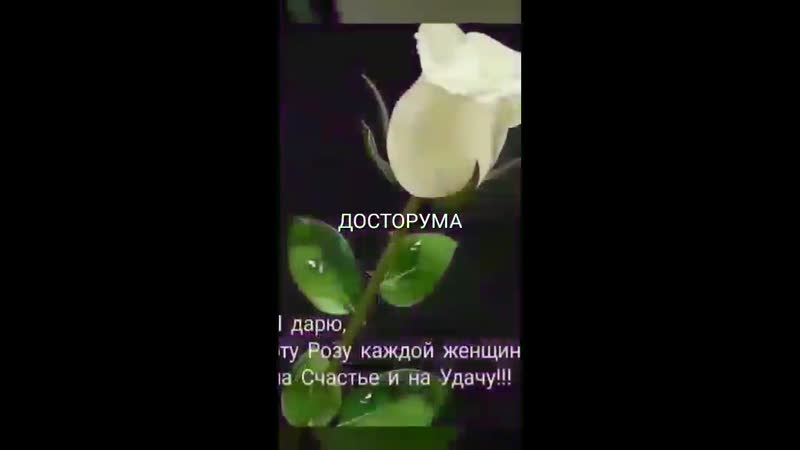 VIDEO 2020 04 12 09 02