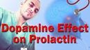 Dopamine Effect on Prolactin (QOTD 11 27 12) - NOTE!! (Basophils - FLAT vs. Acidophils - GH Pro.)