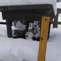 3 дня зимы=10 сантиметров снега