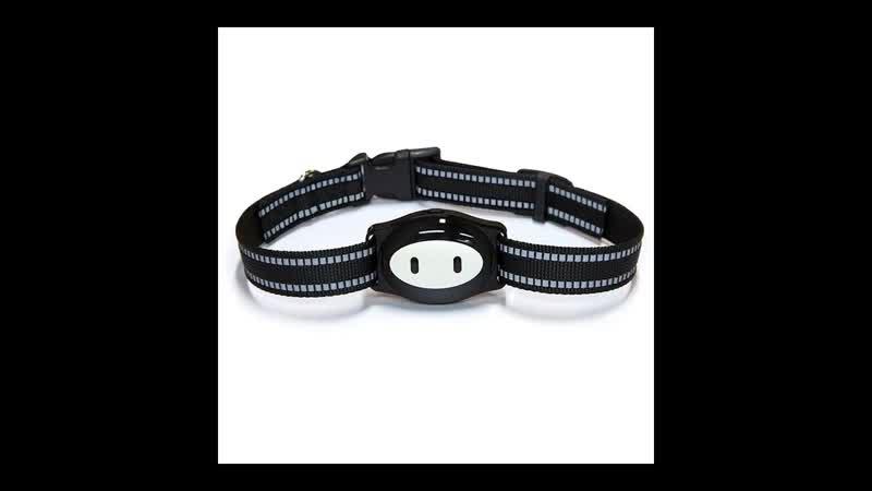 GPS ошейник для собак и кошек - Pet GPS D79 купить наложенным платежом недорого интернет магазин