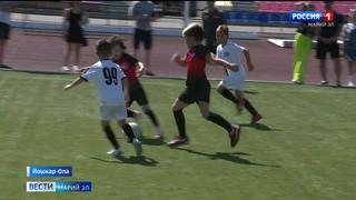 В Йошкар-Оле прошёл фестиваль детской футбольной лиги