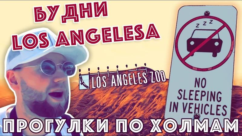 Будни Лос Анджелеса Голливудские холмы зоопарк