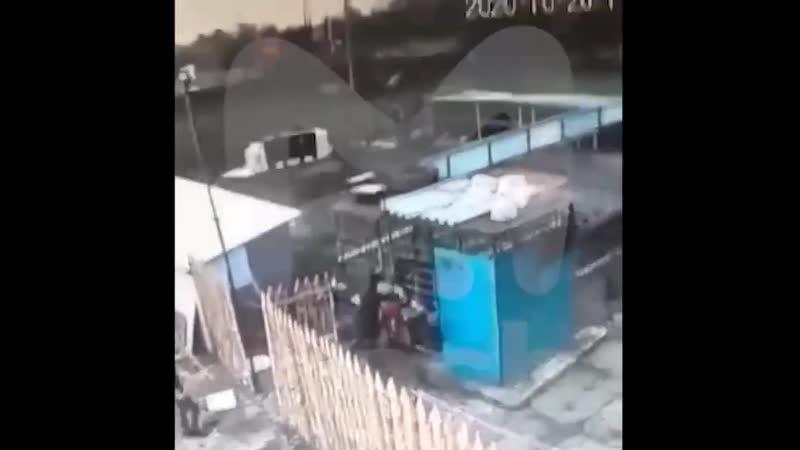 Медведь напал на работницу зоопарка