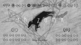 Rhizoma. Программа «Бессонницы-2019»