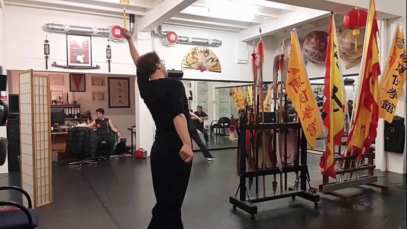 Drunken Master Part of the Tiger Crane Double form 虎鶴雙形之 醉酒八仙