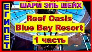 Египет. Шикарный риф отеля Reef Oasis Blue Bay Resort &SPA 5*.