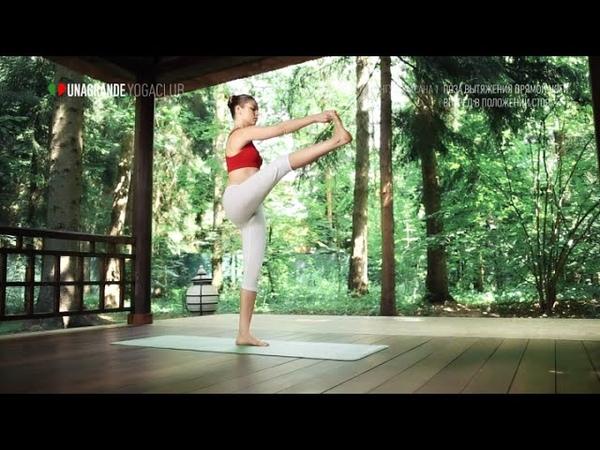Поза вытяжения прямой ноги вперед стоя Уттхита хаста падангуштхасана 1 Позы йоги для продвинутых