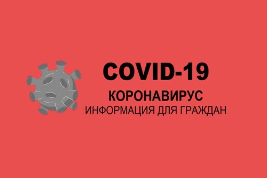 Второй волны COVID-19 в Таганроге и области нет