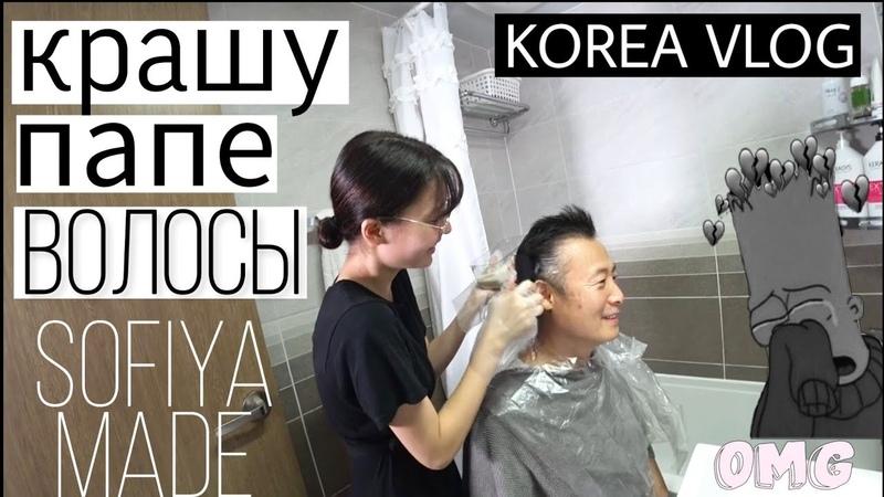 София покрасила папу ㅣ소피야의 미용실 놀이 과연 결과는 ㅣ SOPHIA'S HAIR SALON