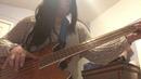 "Had a Little Dreidel"" Cover on Acoustic Electric Daisy Rock Stardust"