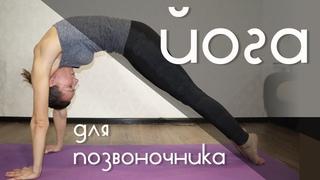 Йога для позвоночника | Здоровая спина за 15 мин