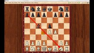 Шахматы для начинающих. Урок  6
