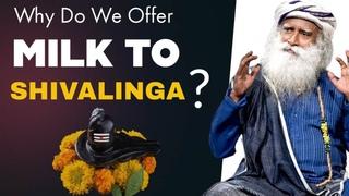 Sadhguru On Shiva   Why Do We Offer Milk To Shivalinga   Mahashivratri 2021