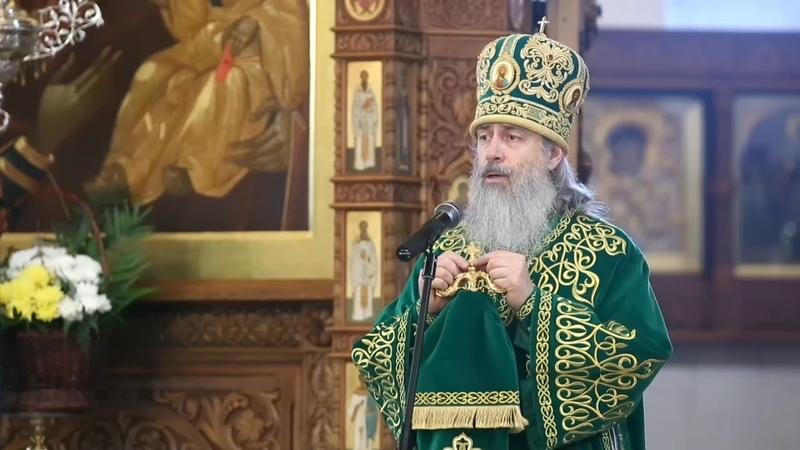 Наша молитва должна быть криком к Богу о помощи проповедь митр Арсения в Вербное воскресенье