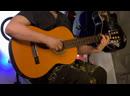 Обзор звучания, Гитара - Aria