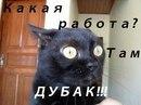 Фотоальбом Федора Чистякова