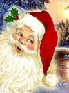Дед Мороз и Снегурочка на дом. г.Королев