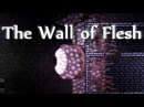 Wall of Flesh How to summon and kill the boss solo