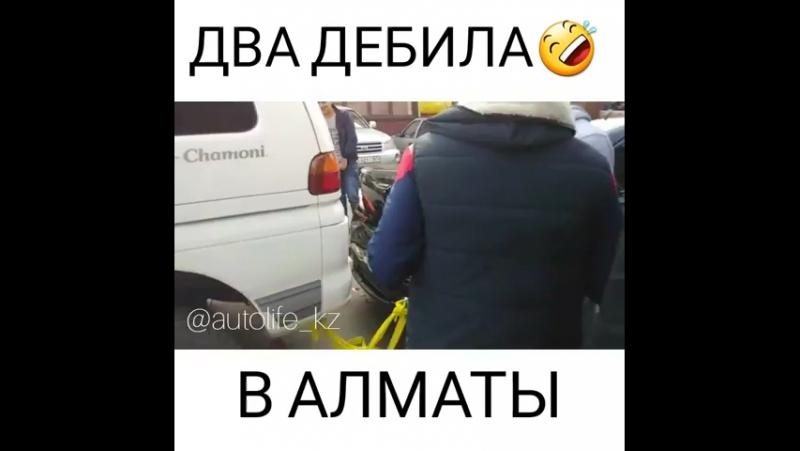 Путаю Передачи