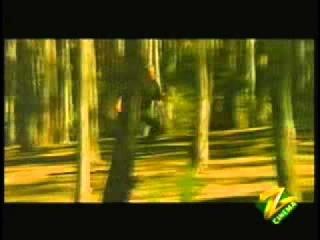 Loha - Tu Ladki No  1 Hai Kya