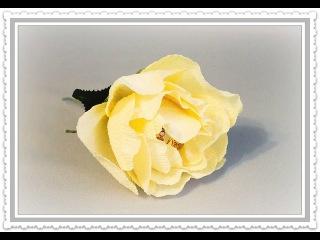 18 видов цветов: Пышная роза