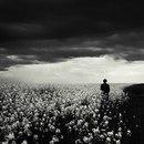 Личный фотоальбом Артура Сысоева