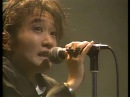 JUN TOGAWA YAPOOS TOUR LIVE '85〜'86
