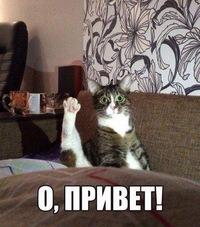 Горшков Петя