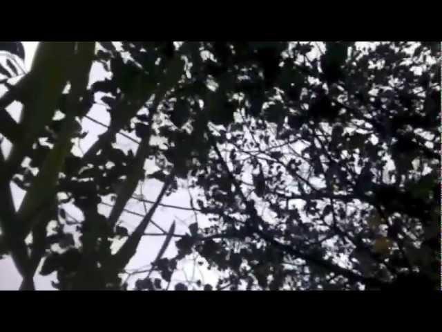 Хуун Хуур Ту совместно с болгарским хором Angelite
