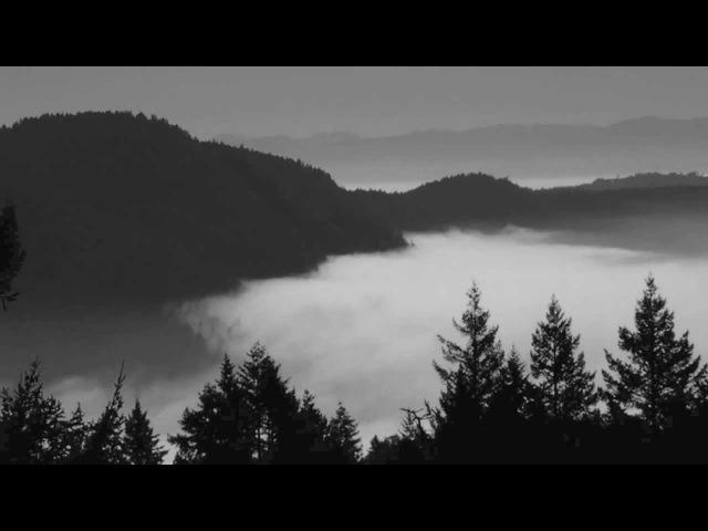 Australasia Twin Peaks Theme Angelo Badalamenti cover